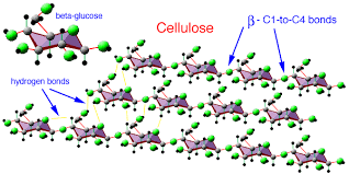 Molecular Advent Day 16: Cellulose