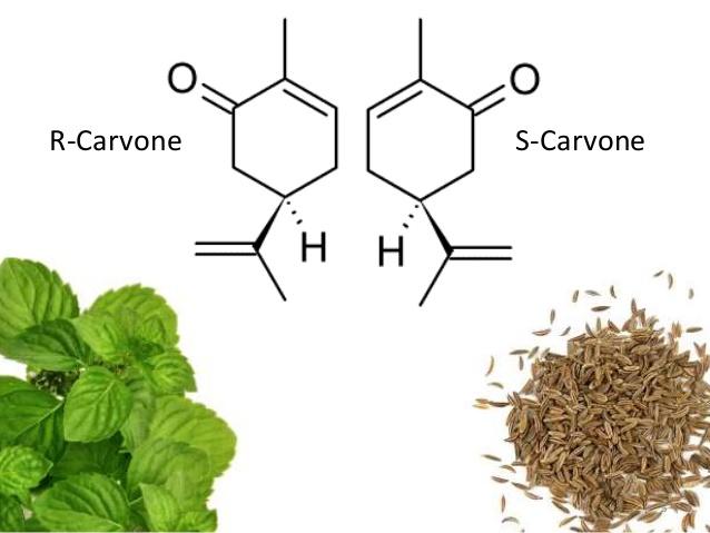Carvone